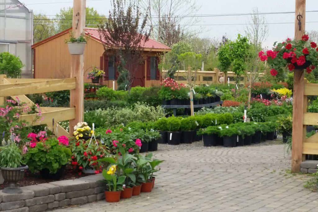 Palmer Nursery Garden Center